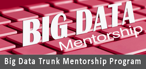 big-data-mentorship-program1-copy